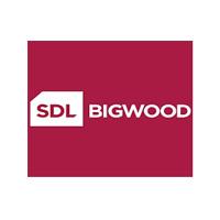 client-logo-bigwood