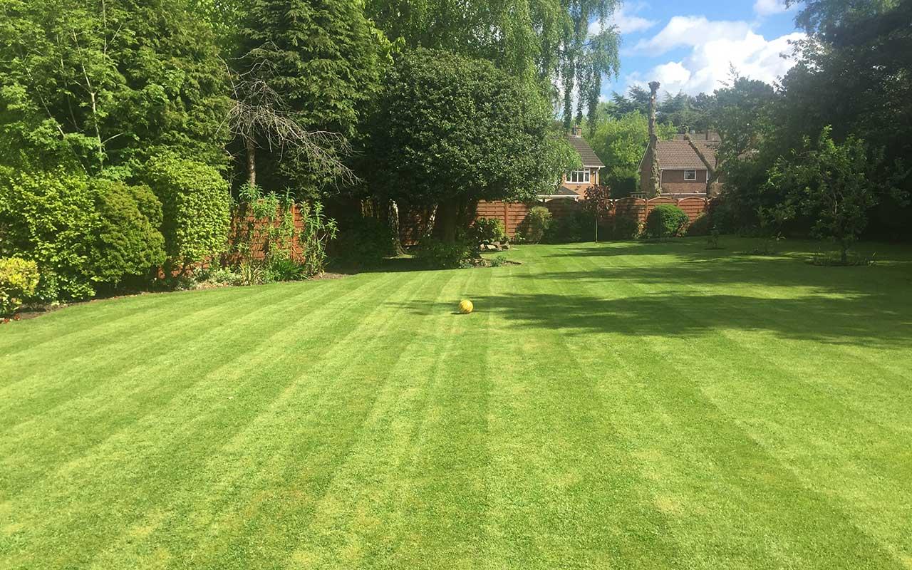 lawns-2