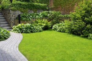 service-garden-maintenance
